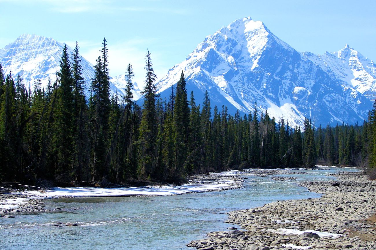 Icefields_Parkway,_Alberta_(5808757247)_t
