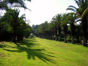 Mikveh Israel' Botanical Gardens.