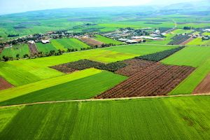 Aerial View of the Green Galilee.