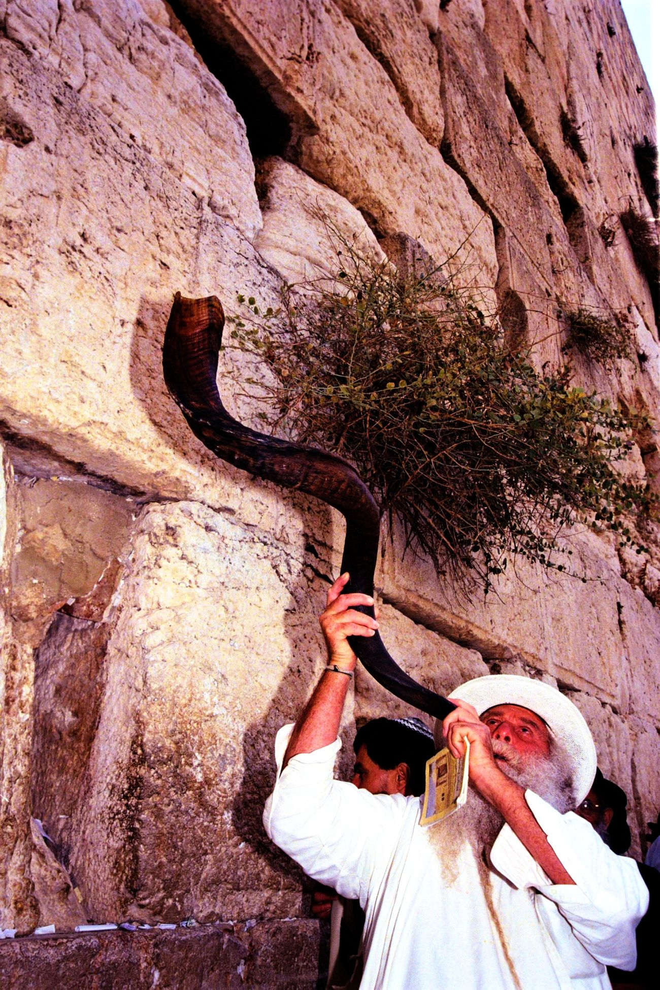 flickr_-_government_press_office_gpo_-_blowing_the_shofar_at_the_western_wall_t