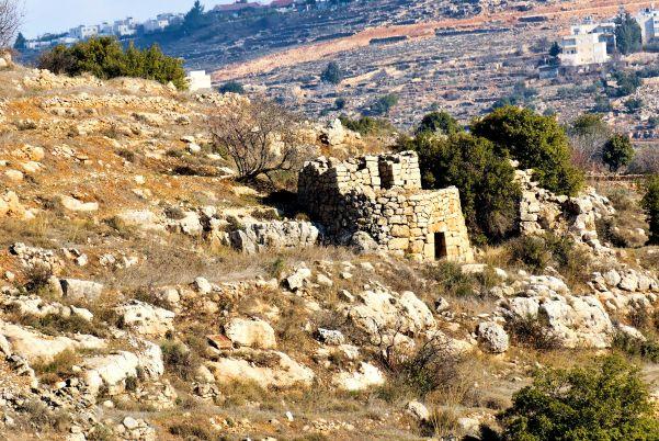 watchtower-in-judean-hills-tb010107224_t