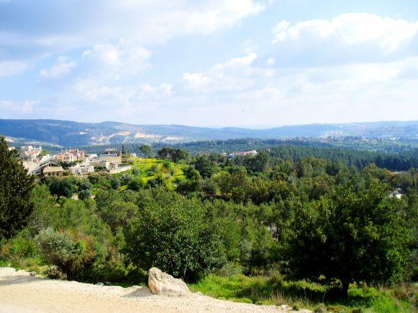 Eshtaol Forest (Hebrew: יער אשתאול), Rabin Park (פארק רבין), Israel, a Jewish National Fund Forest.