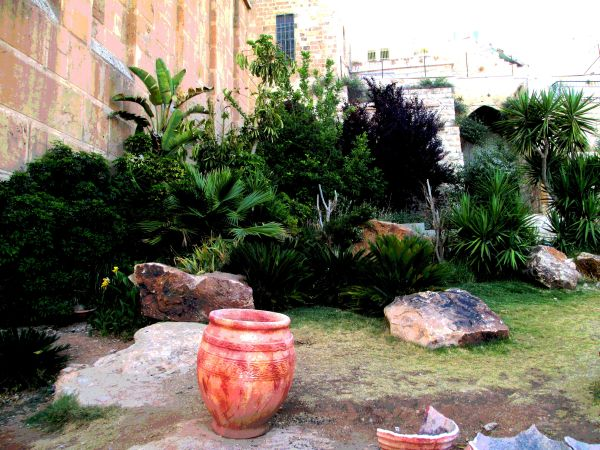 The Seventh Step Garden in Hebron.