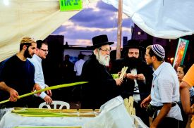 Negotiating for the Lulav at the Bnei-Brak Market.