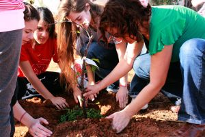 Planting trees in a community project in the Farhi Hadar neighborhood of Pardes Hanna.